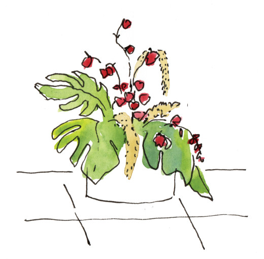 Zeichnung einer blühenden Pflanze in einem Blumenkübel.