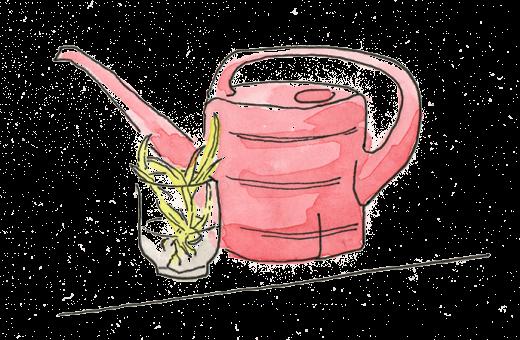 Zeichnung von einer Gießkanne und einem Wasserglas mit Pflanzenableger.